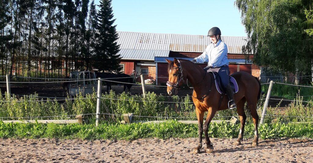 Ratsastaja ja nuori hevonen
